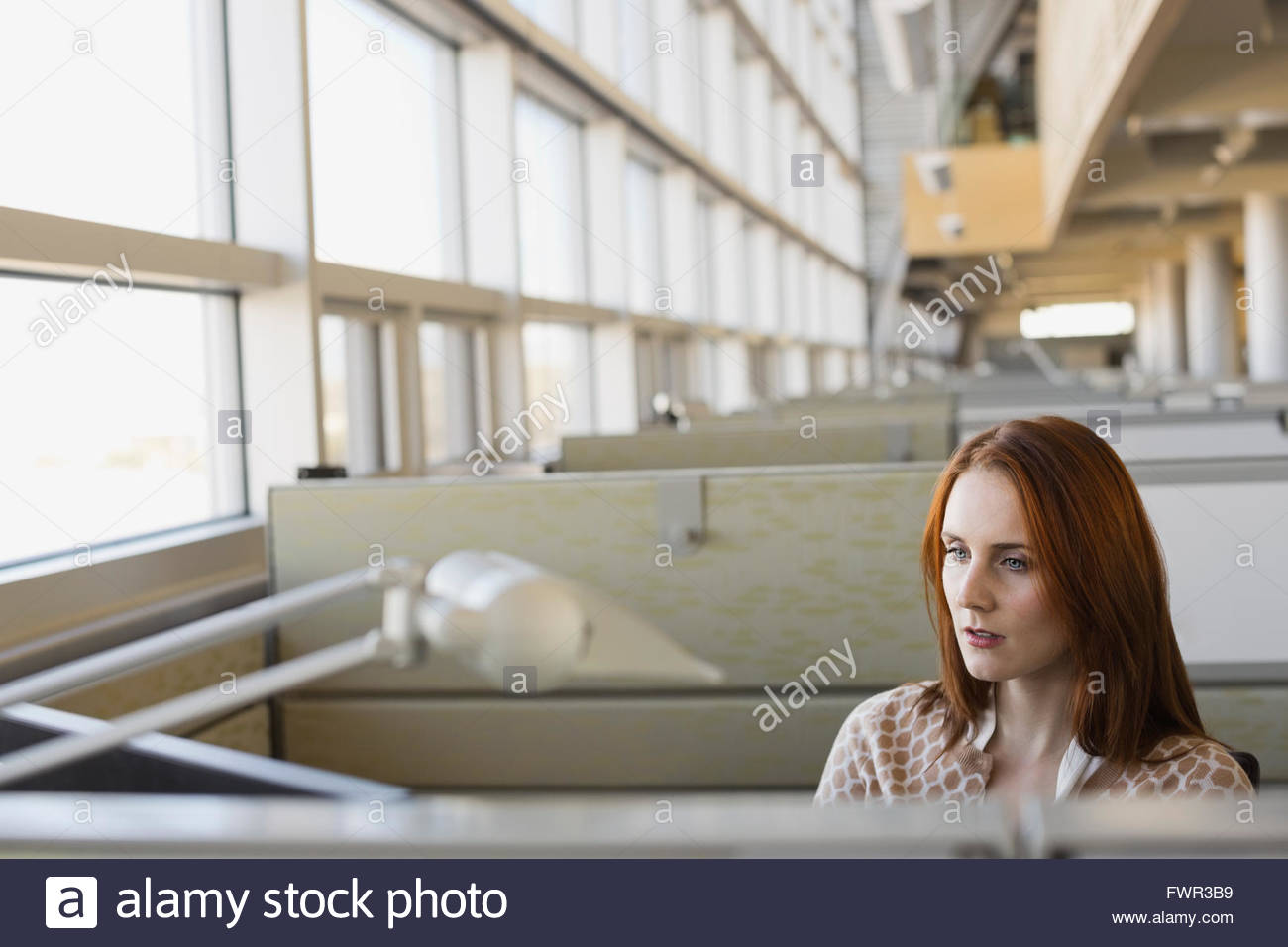 Imprenditrice lavoro in ufficio Immagini Stock