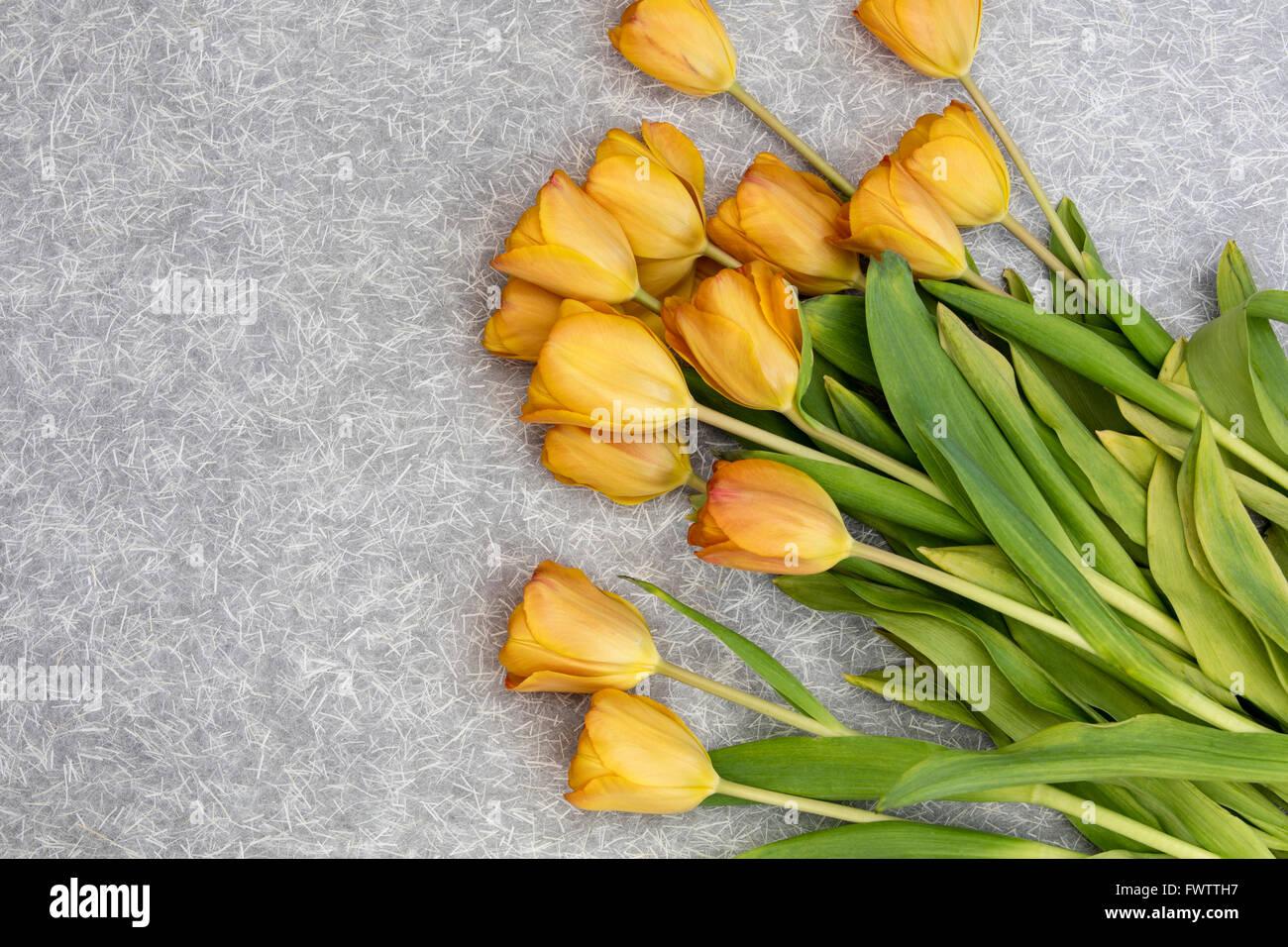 Fiori Giallo Oro.Mazzo Di Fiori Di Colore Giallo Oro E Tulipani Su Uno Sfondo A