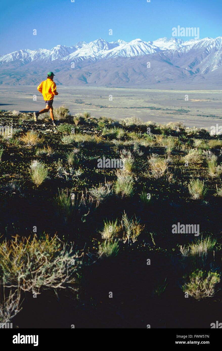 Montare il giovane atleta maschio trail runner nella Sierra Nevada, in California, sulle colline Immagini Stock