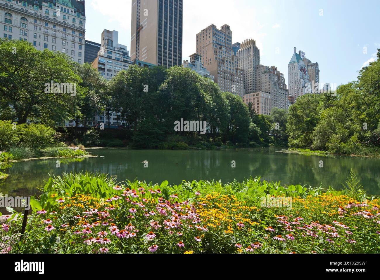 Il Central Park di New York, New York, Stati Uniti d'America Immagini Stock