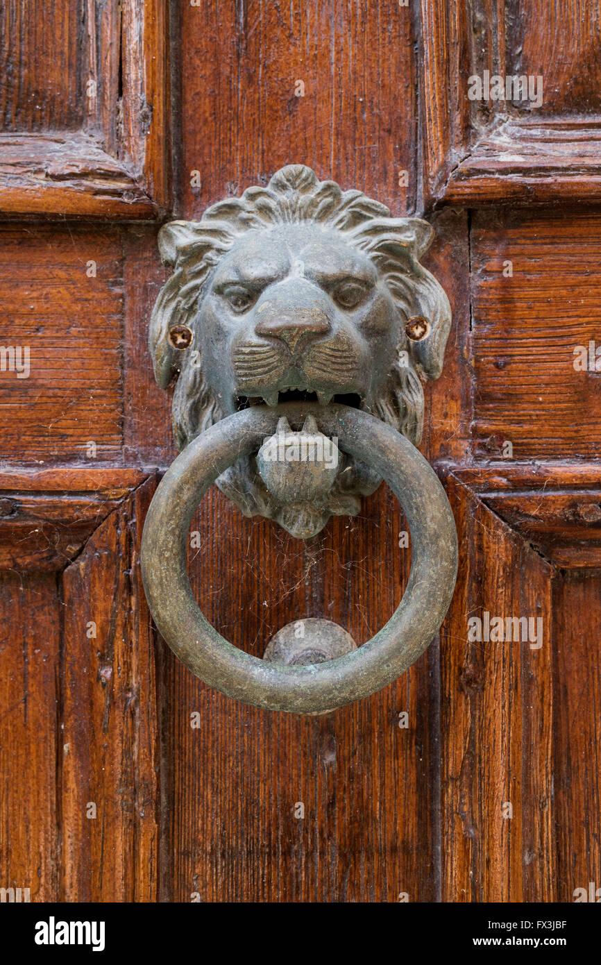 Ottone testa leone respingente su una vecchia porta Immagini Stock