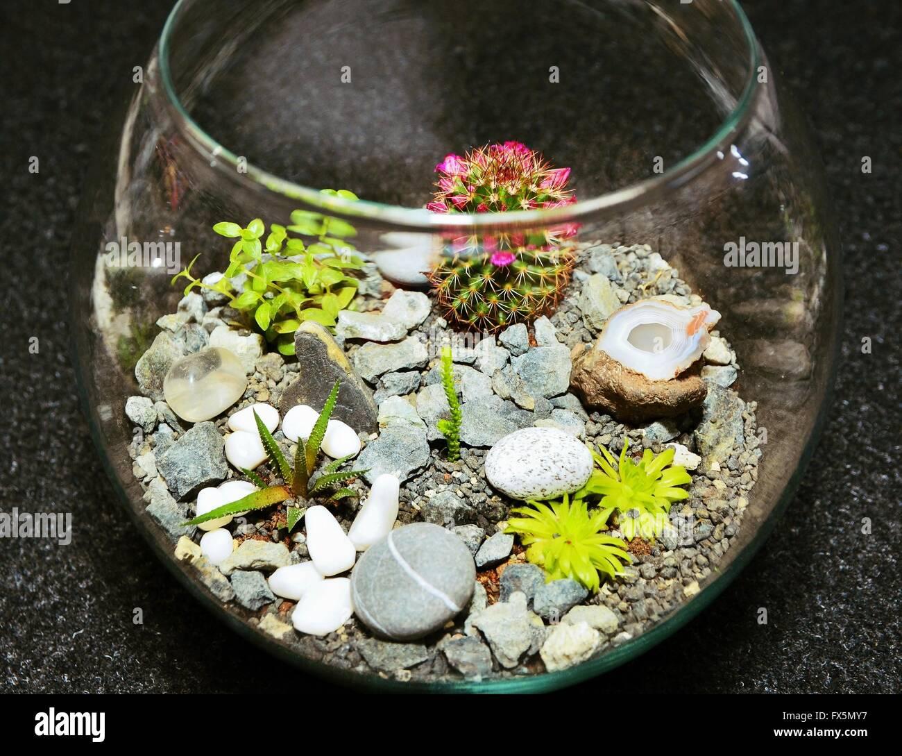 Trendy tavolo decorativi per interni giardino in miniatura - Ikea vasi decorativi ...