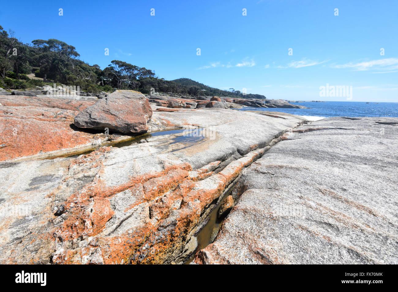 Costa al Bicheno, Tasmania, TAS, Australia Immagini Stock
