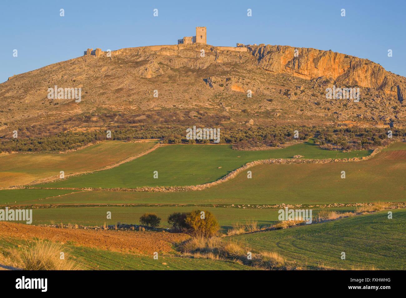 Teba, provincia di Malaga, Andalusia, Spagna meridionale. Castello di stella. Castillo de la Estrella. Immagini Stock