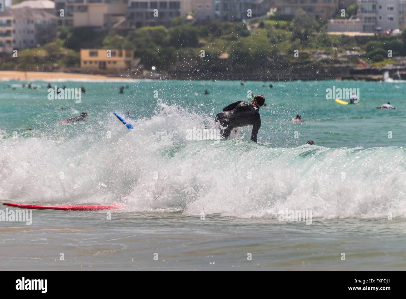 Giovani surfer sull'onda contro molti altri surfisti. A sette miglia dal centro di Sydney, Immagini Stock