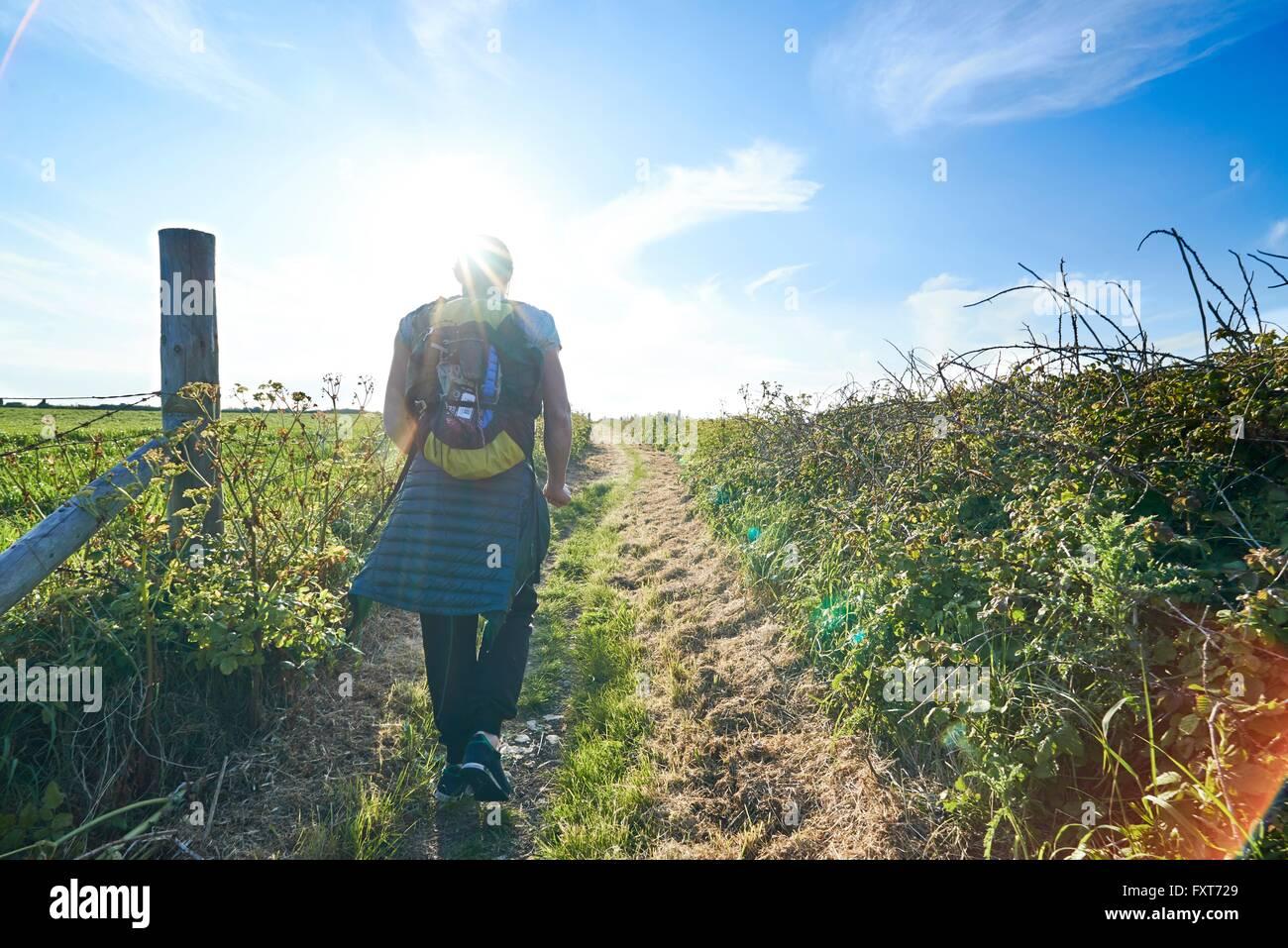 Vista posteriore di un escursionista con zaino escursionismo sul percorso nel campo Immagini Stock