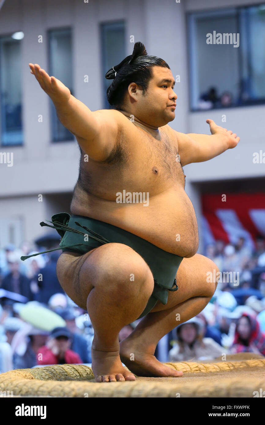 Tokyo Giappone. Xviii Apr, 2016. Takayasu, 18 aprile 2016 - Sumo : annuale torneo di sumo dedicata al Santuario Immagini Stock