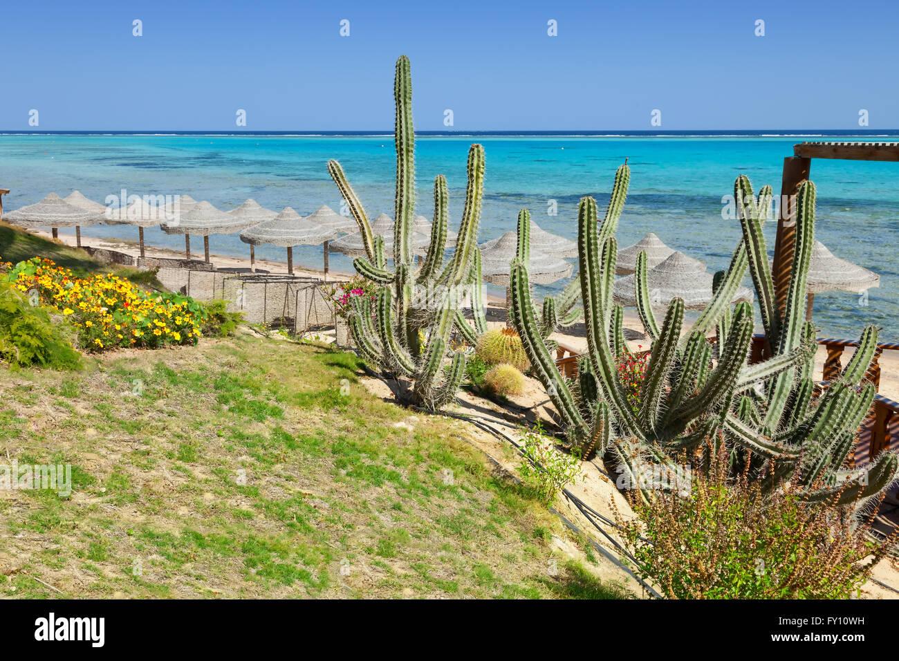 La spiaggia e il mare di Marsa Alam, Mar Rosso, Egitto Immagini Stock
