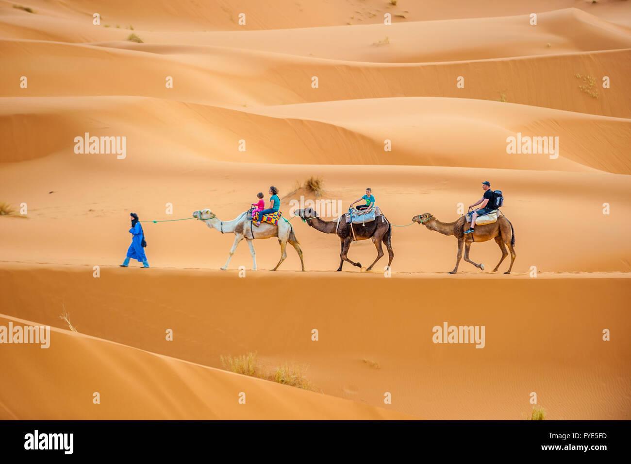 ERG CHEBBY, Marocco - aprile, 12, 2013: i turisti a cavallo di cammelli in Erg Chebbi, Marocco Immagini Stock