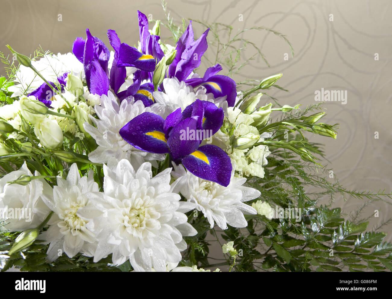Irises and roses immagini irises and roses fotos stock for Come costruire un mazzo di portico anteriore