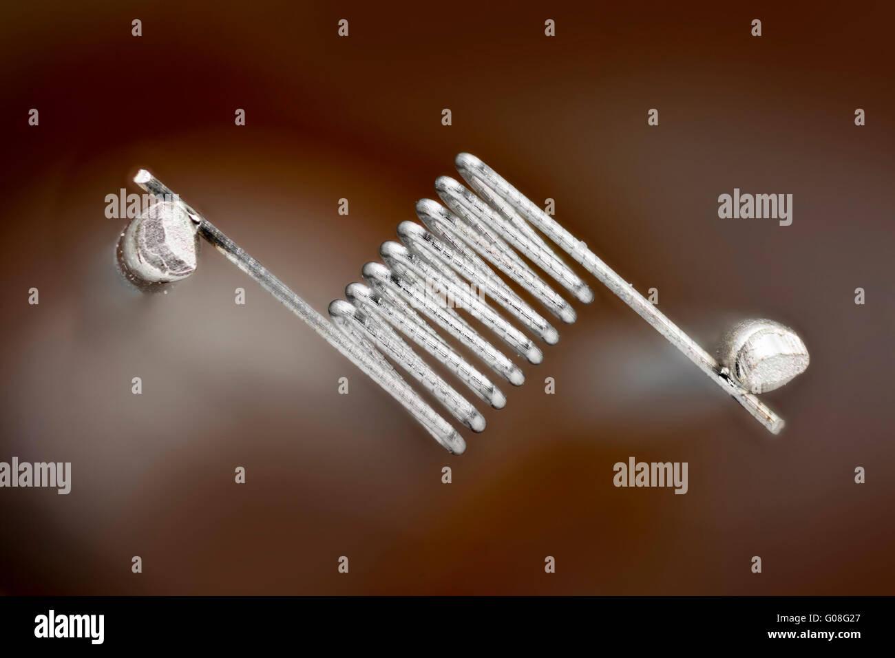 Di tungsteno del filamento della lampadina di un microscopio