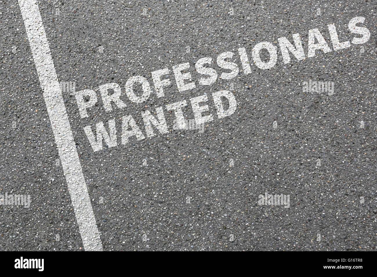 Professionisti ha voluto processi, processo di lavoro professionale assunzione dipendenti concetto aziendale Immagini Stock