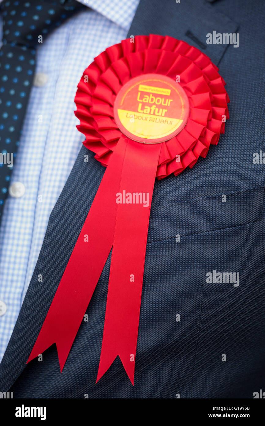 Rosso laburista gallese coccarda indossata da un gallese partito laburista attivista. Foto Stock