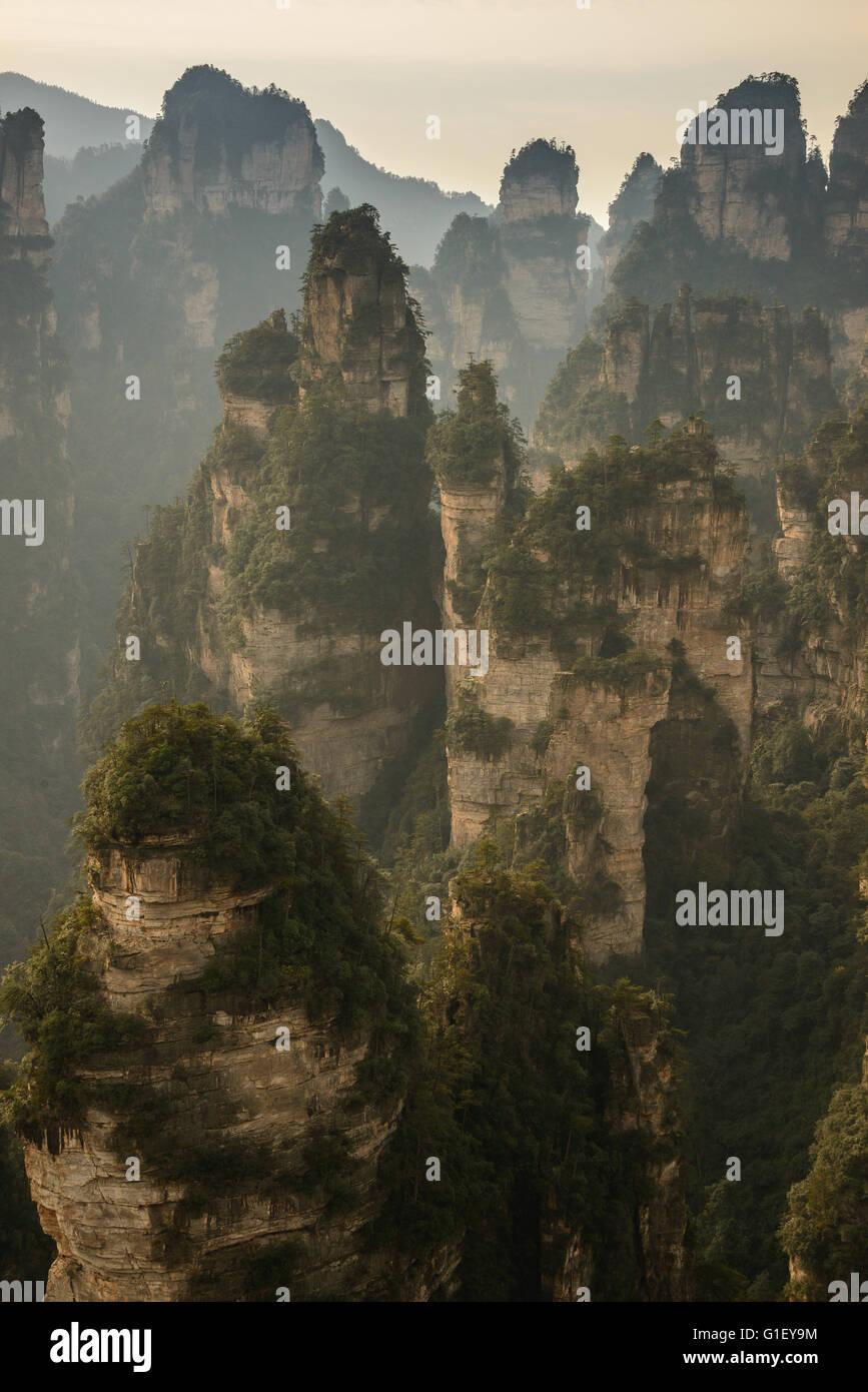 Zhangjiajie National Forest park nella Cina centrale. Famoso per ispirare Avatar Immagini Stock