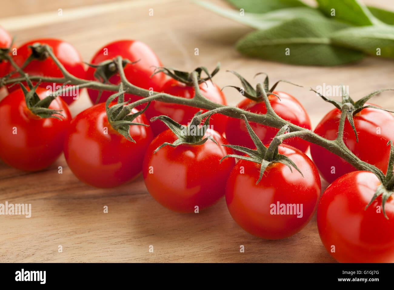Vite con freschi maturi rossi pomodori ciliegini Immagini Stock