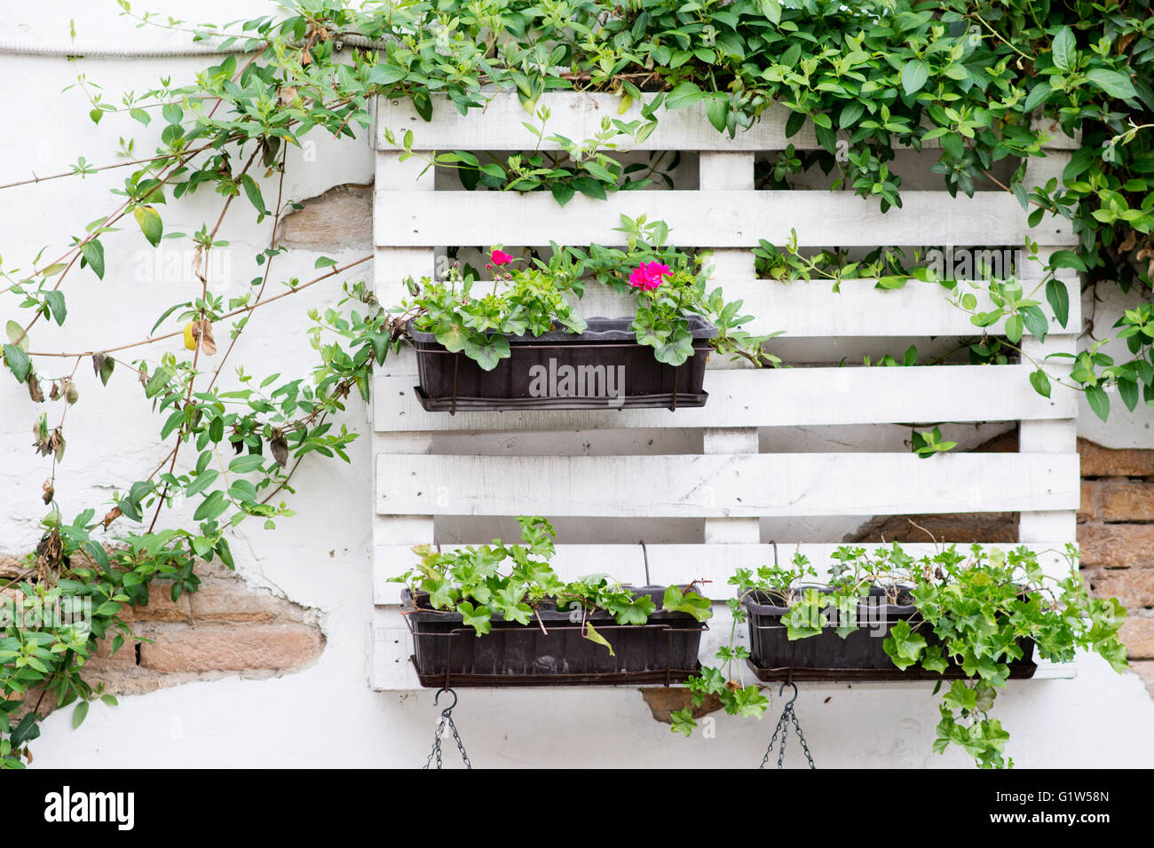 Idee Per Vasi Da Fiori idee interessanti per il giardinaggio utilizzando pallet