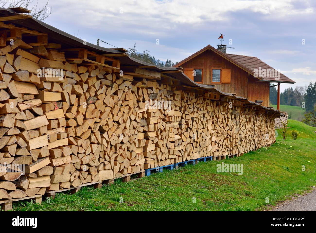Pila di tronchi per legna da ardere stagionatura sotto fogli di stagno Immagini Stock