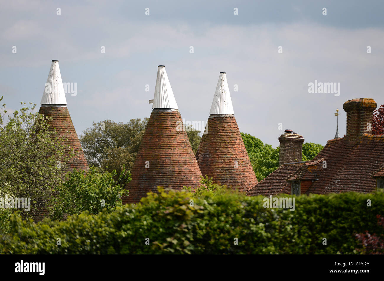 Oast house tetti, East Sussex Foto Stock