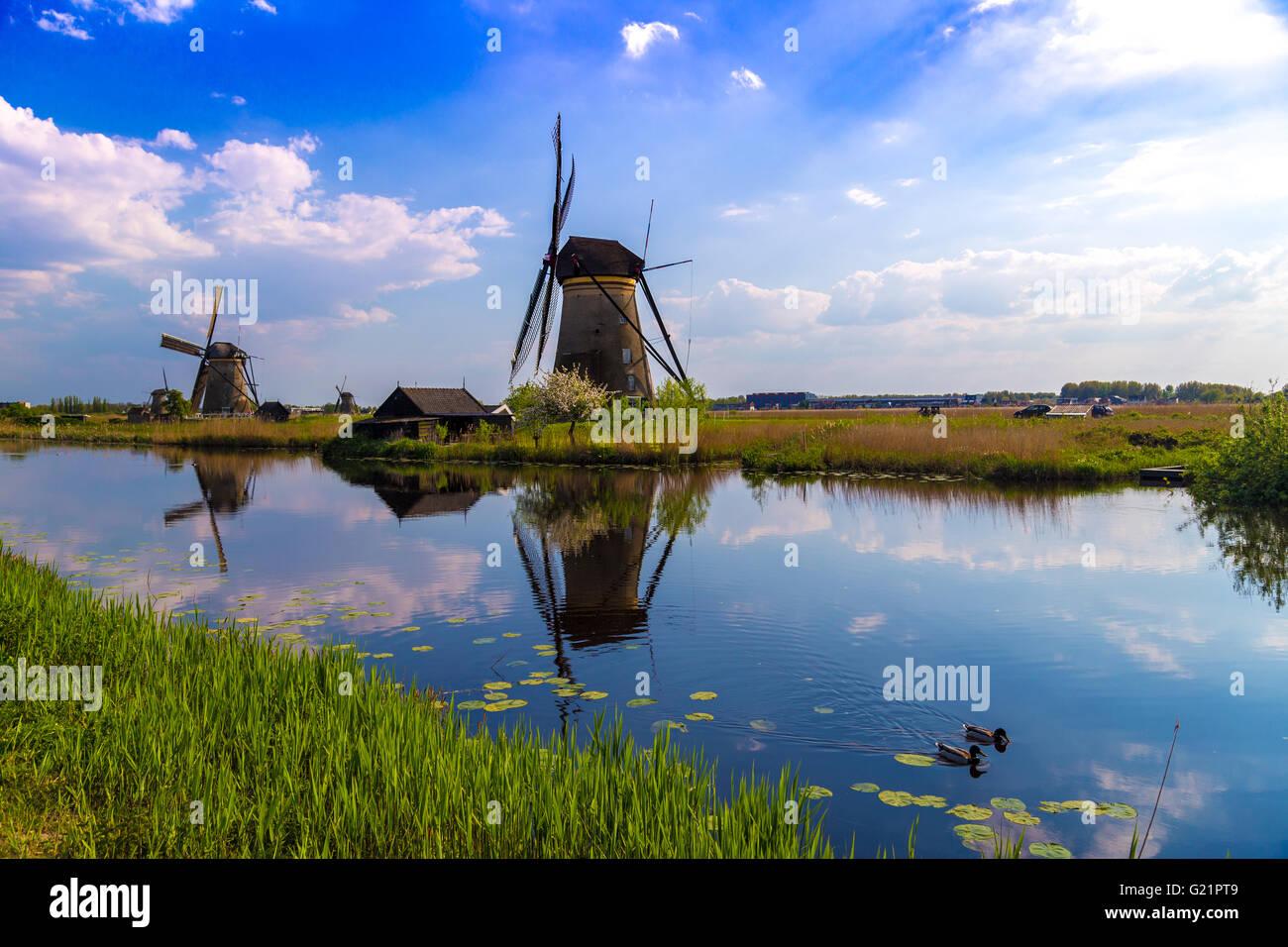 Mulini a vento riflessa nei canali olandesi a Kinderdijk, sito UNESCO nei Paesi Bassi Immagini Stock