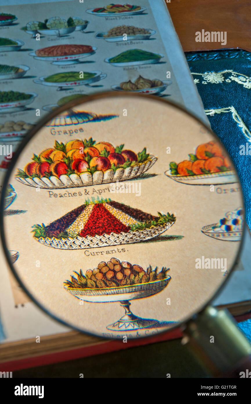 Il vetro di lettura sulla litografia di Mrs Beeton del libro di cucina che illustra la varietà di piatti in Immagini Stock