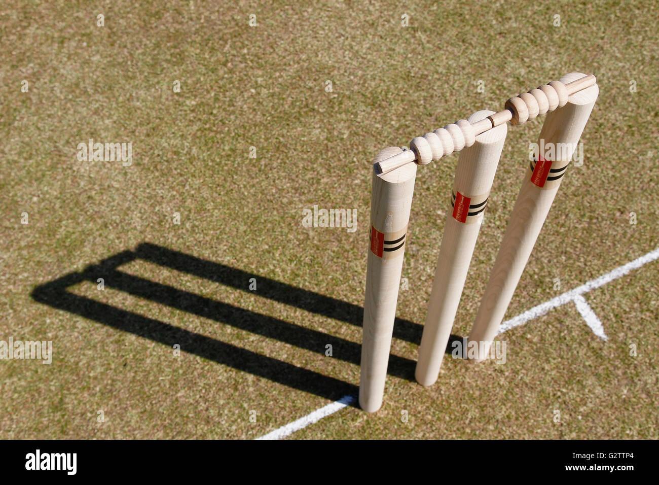 Sport a sfere, cricket, ceppi di legno. Immagini Stock