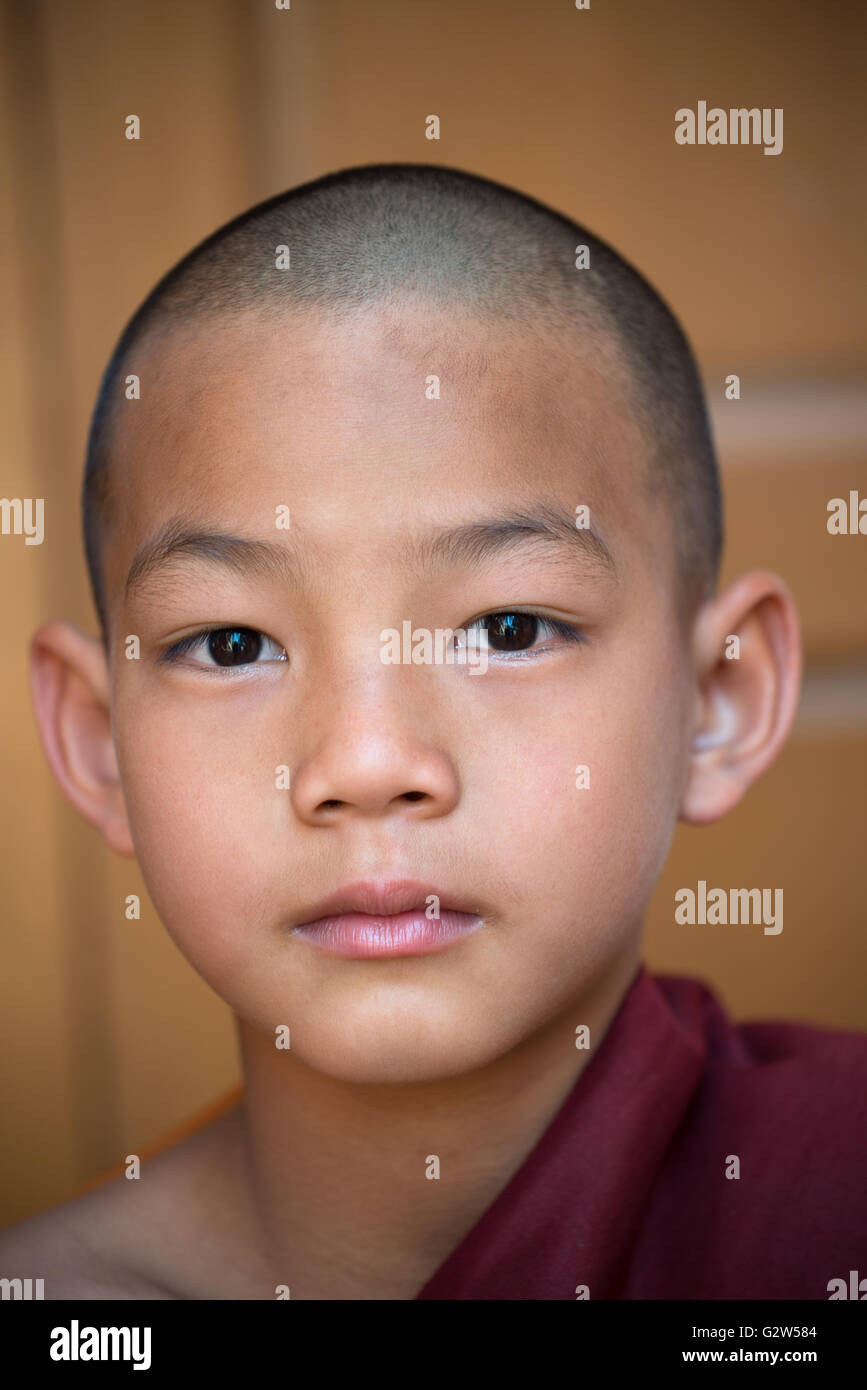 Giovane monaco novizio, Stato Shan, Myanmar Immagini Stock