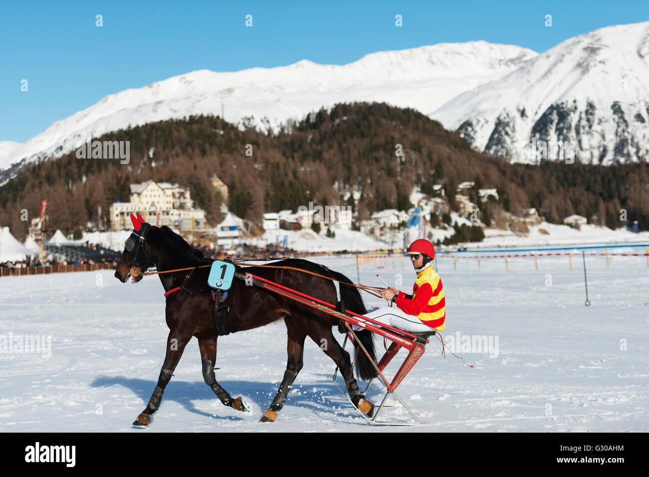 Evento di trap, White Turf Concorso Ippico Internazionale, inverno, San Moritz, Engadina, Grigioni, Svizzera, Europa Foto Stock