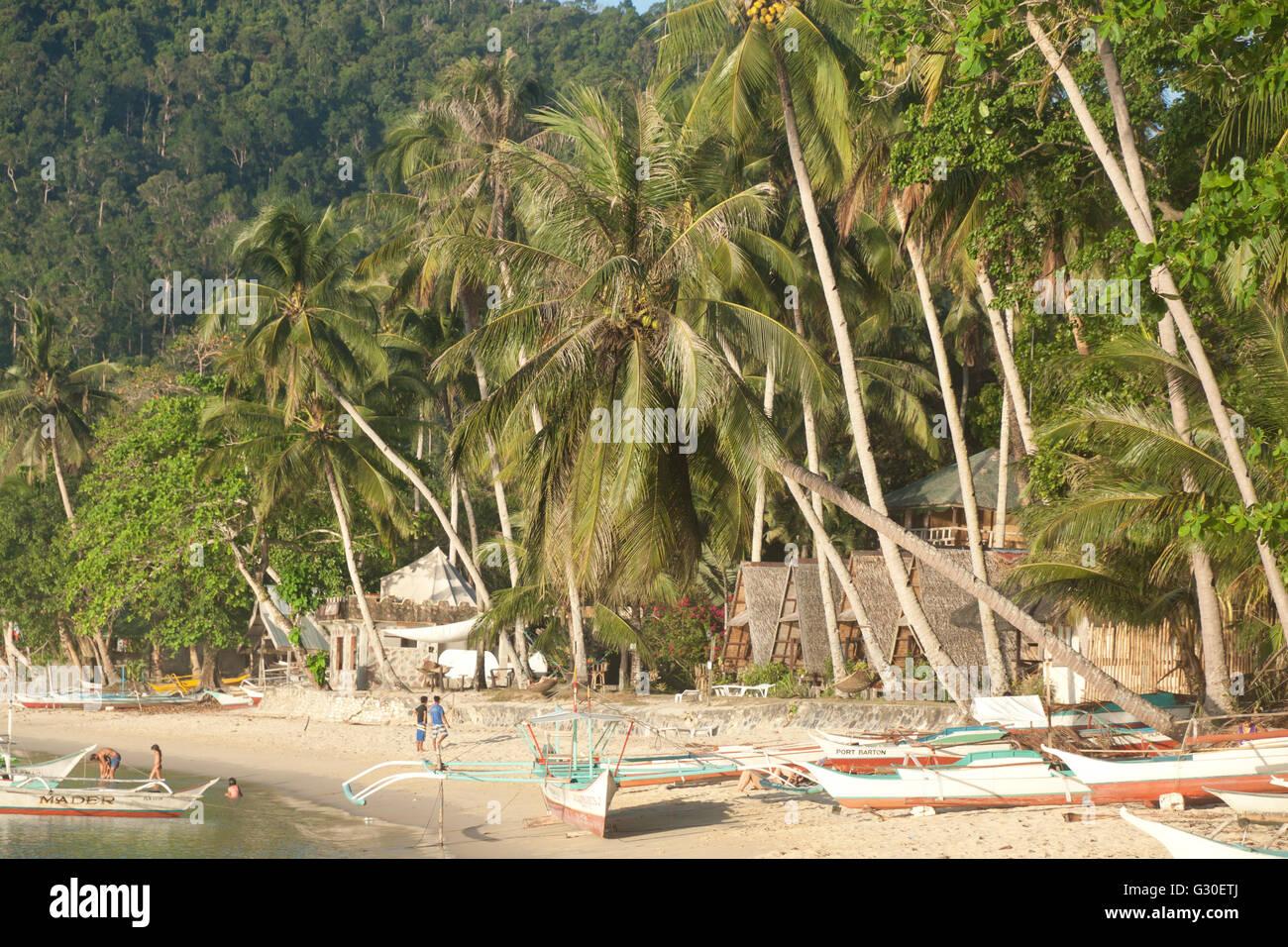 Vera vita di spiaggia sull isola di Palawan, Filippine Immagini Stock