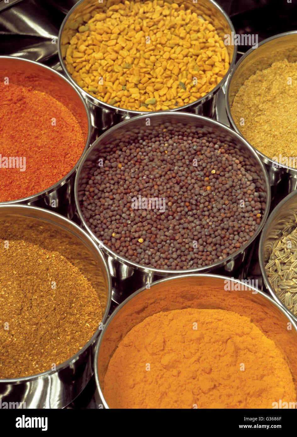 Foto di spezie indiane - Masala scatola contenente fieno greco, curry, garam, nero semi di senape, chili di semi Immagini Stock