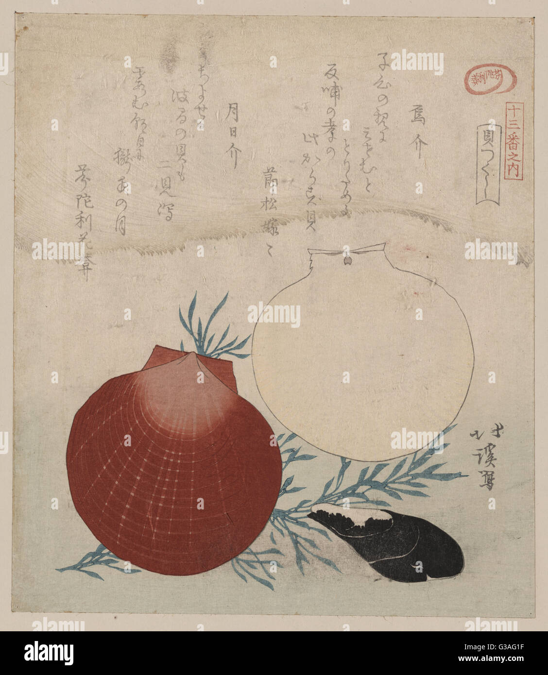 I molluschi e i crostacei. Data compresa tra 1800 e 1830 stampati tra il 1890 e il 1930. Immagini Stock