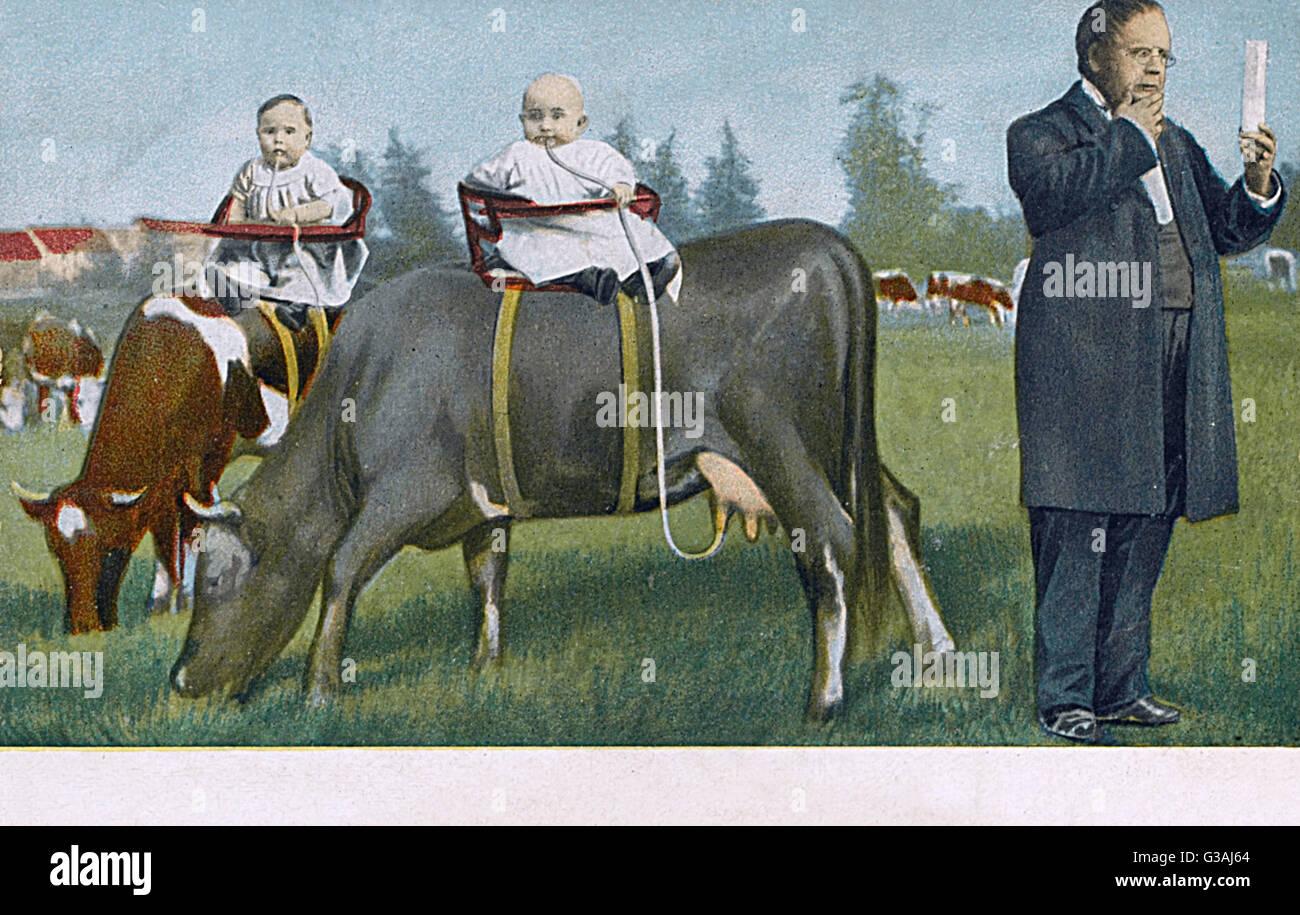 Un abbastanza surreale cartolina tedesca, che mostra due piuttosto paffuto neonati strapped al retro di due mucche, Immagini Stock