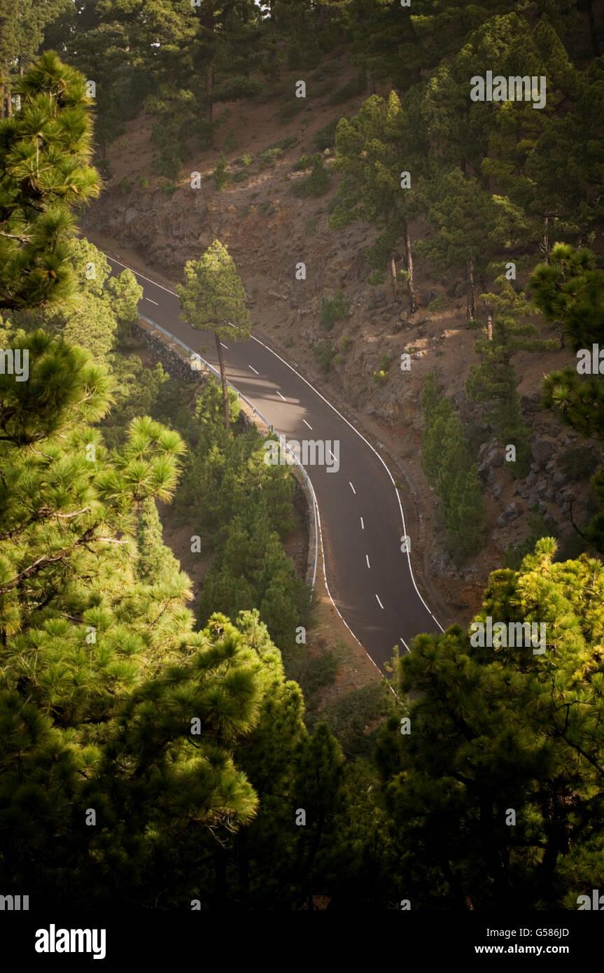 Lunga strada tortuosa curve di spazzamento strade curva unità driver di pilotaggio top gear vuoto foresta liscia Immagini Stock