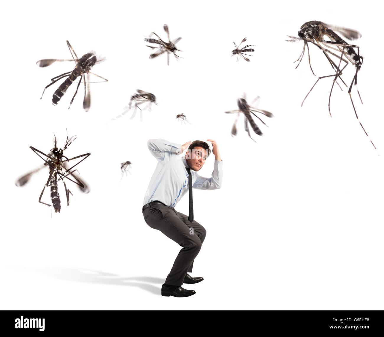 Attacco di zanzare Immagini Stock