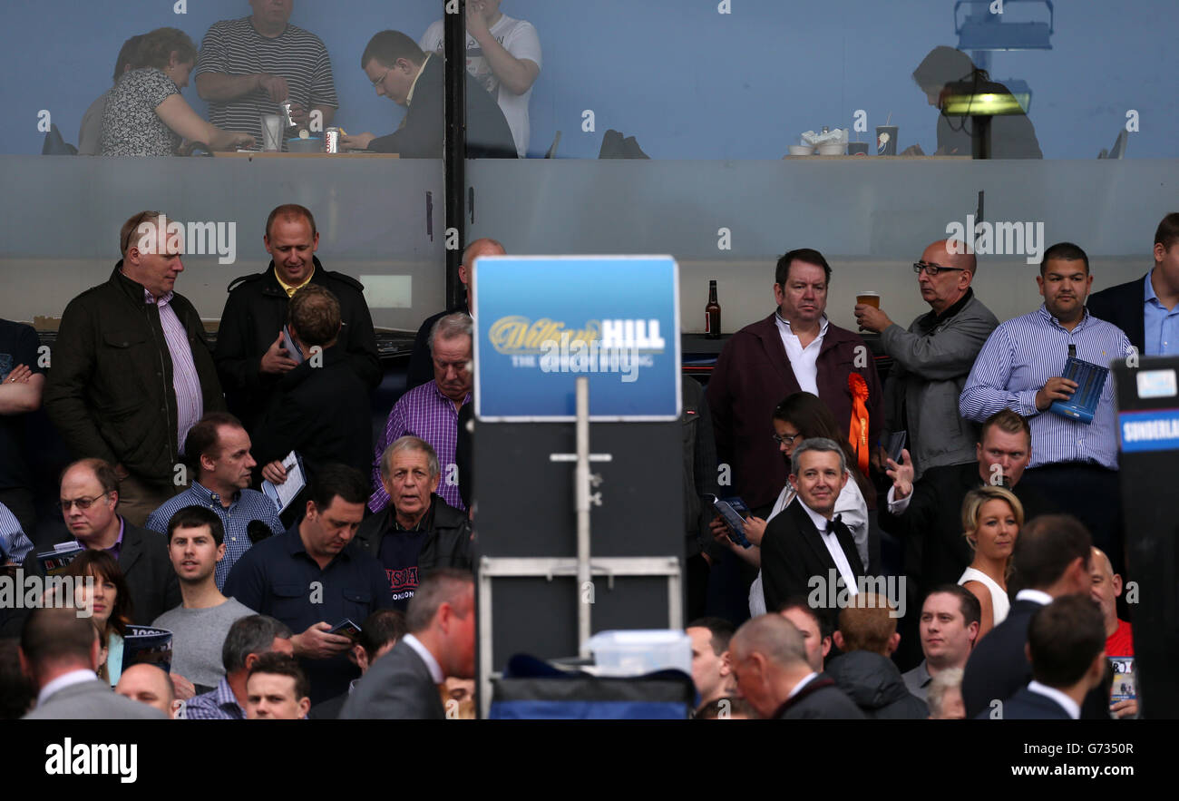 Il Greyhound Racing - William Hill Derby - finale - Wimbledon Stadium Foto Stock