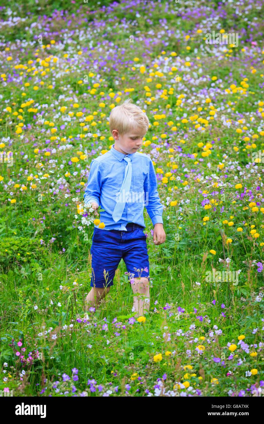 Ragazzo camminando in un prato riempito con diversi fiori colorati, tenendo un mazzetto in mano. Indossare abiti Immagini Stock