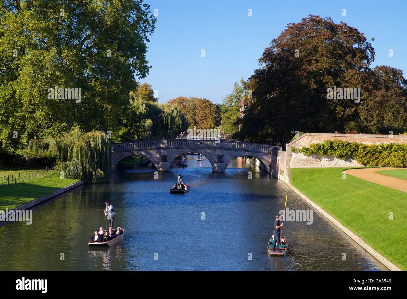 Punting sul fiume Cam dal dorso, vicino a King's College, Università di Cambridge, Cambridgeshire, England, Regno Foto Stock