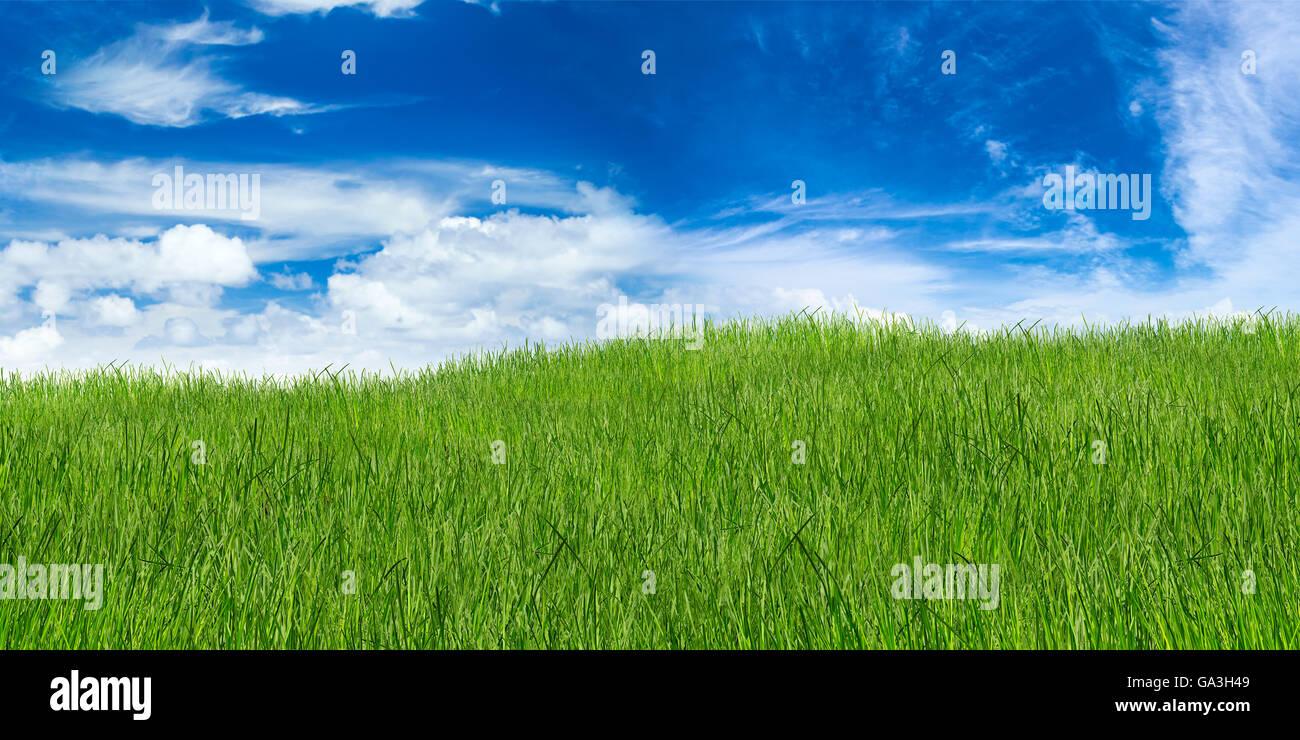 Erba verde paesaggio su blu cielo molto nuvoloso Immagini Stock