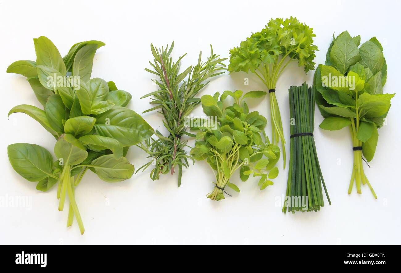 Le erbe fresche per la cottura di isolati su sfondo bianco Immagini Stock