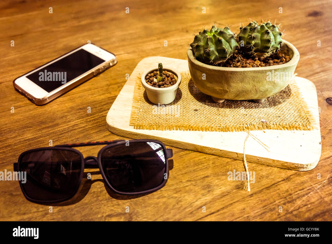 Cactus Wooden Immagini Cactus Wooden Fotos Stock Alamy