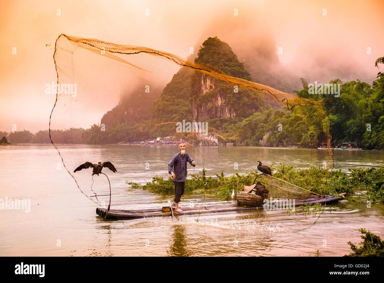 Cinese tradizionale cormorano pescatore getta un netto sul Fiume Li di Yangshuo, Cina. Immagini Stock
