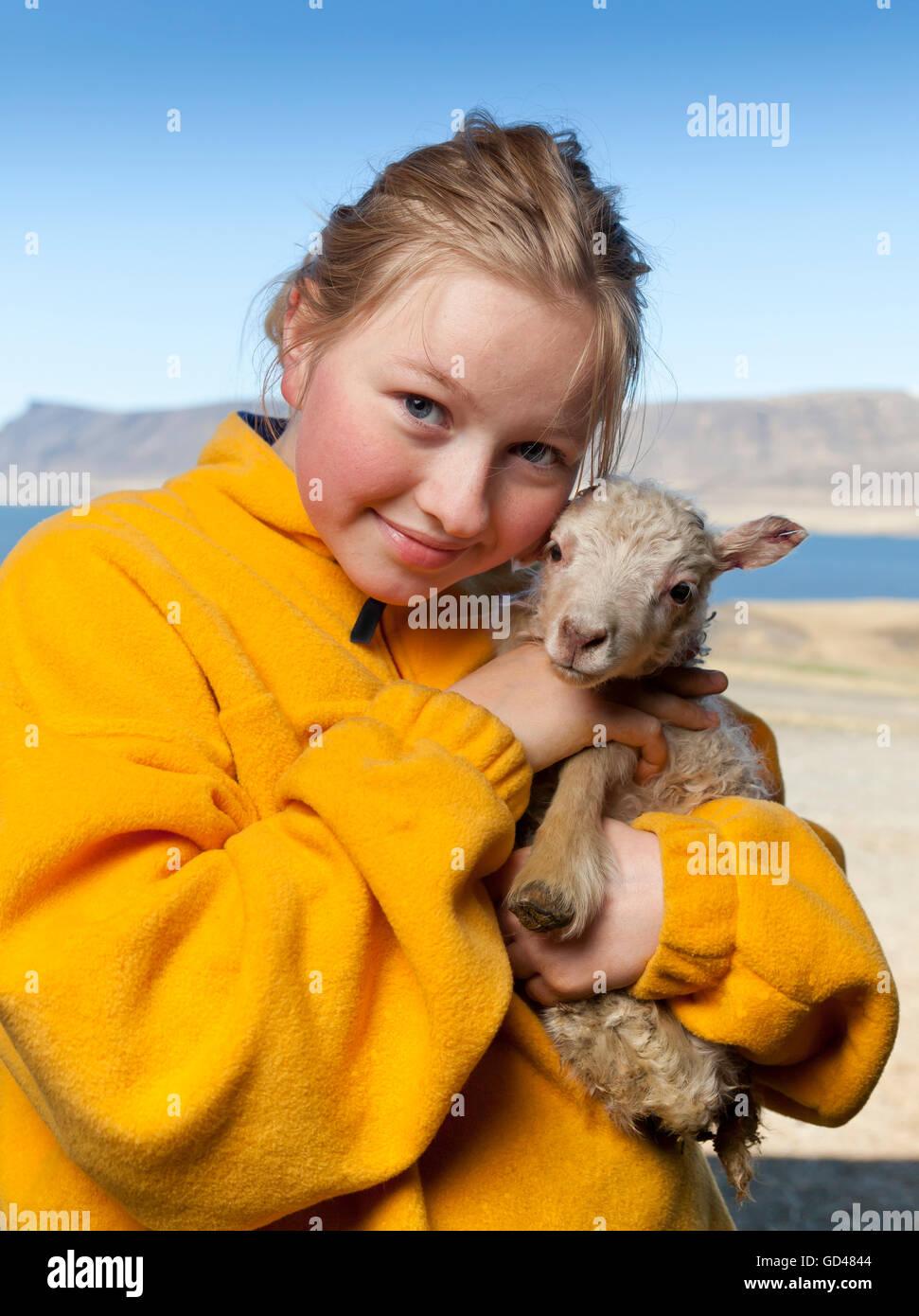 Ragazza con un neonato di agnello, Islanda Immagini Stock