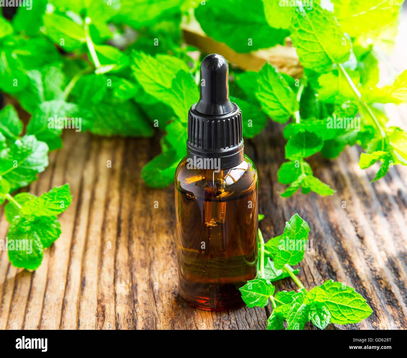 Essenza di menta/olio nella bottiglia di nero sulla tavola di legno con le foglie di menta pianta Immagini Stock