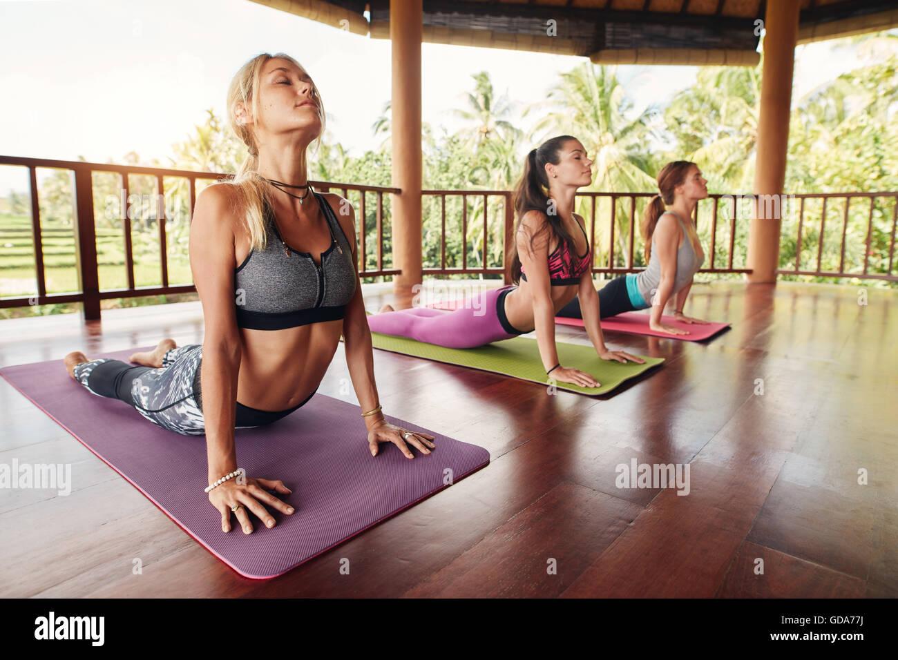 Donne Fitness praticando il cobra pongono durante la lezione di yoga in un centro di salute. Gruppo Fitness facendo Immagini Stock
