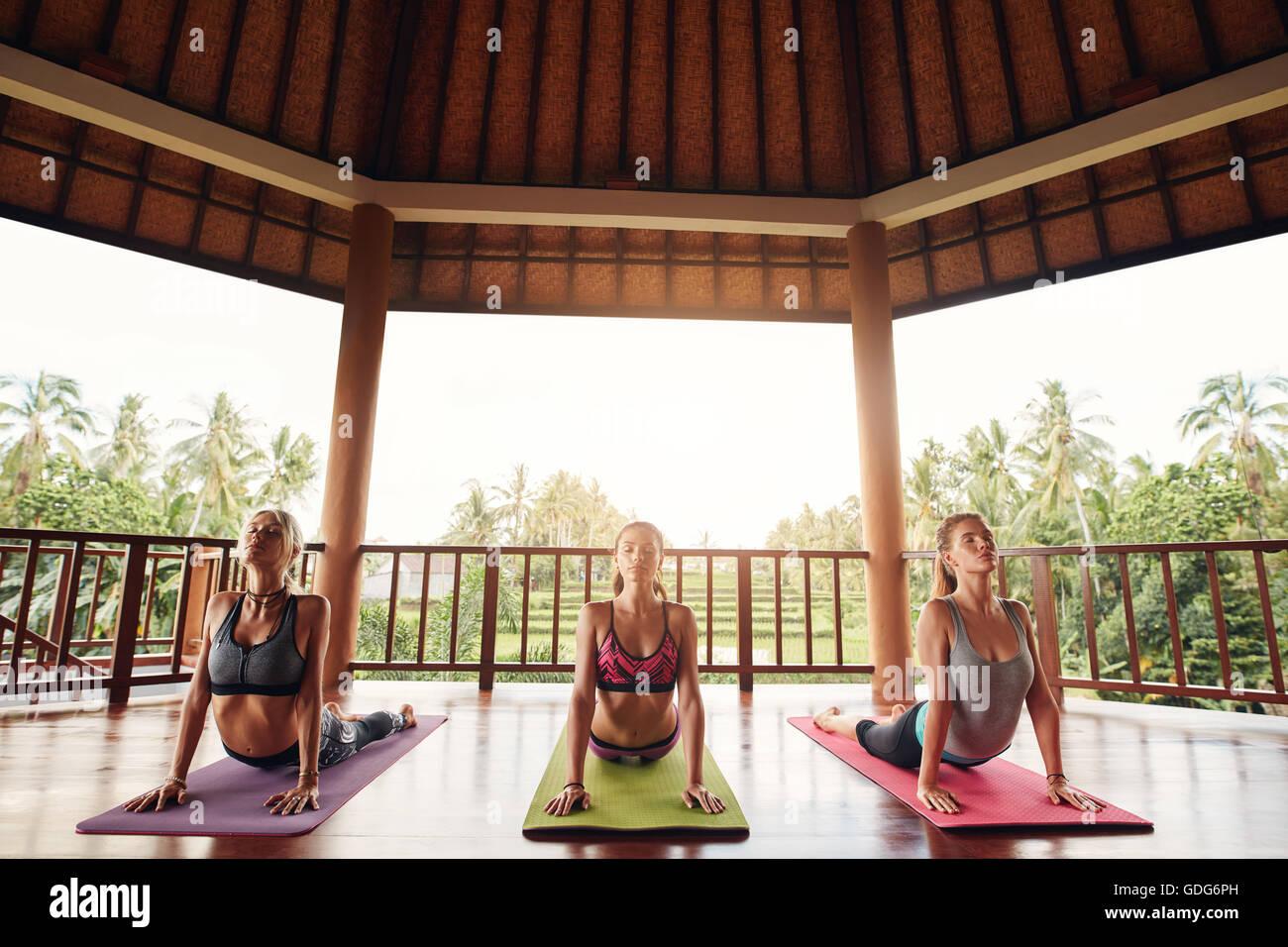 Tre donne praticanti il cobra pongono nel corso di yoga classe al centro di salute. Un gruppo di giovani facendo Immagini Stock