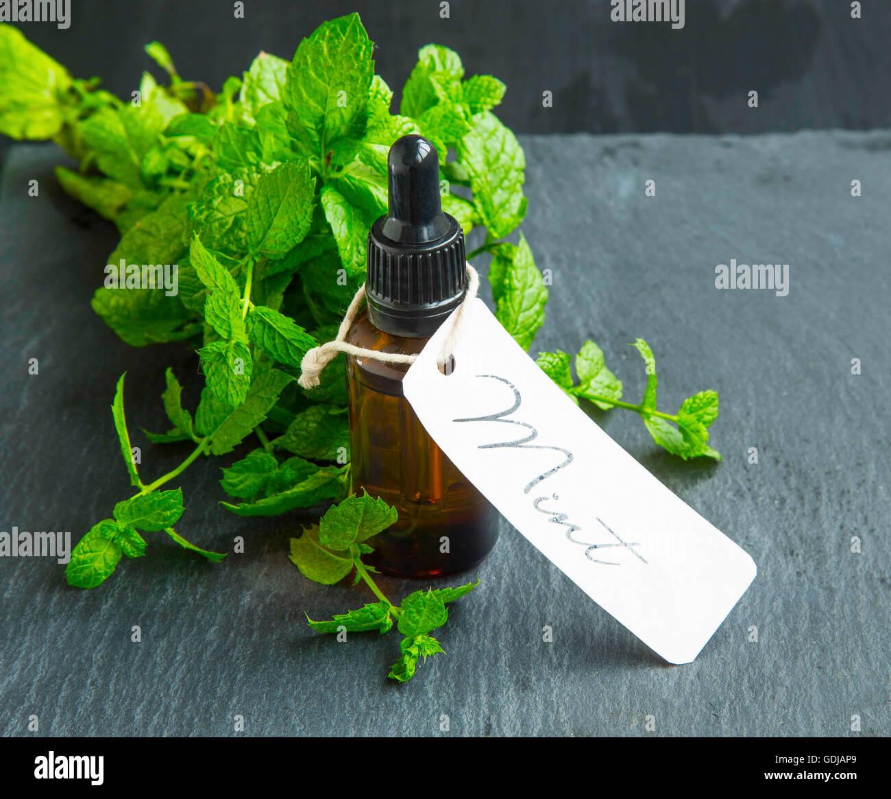 Olio di menta/ essenza bottiglia con etichetta e le foglie di menta Immagini Stock