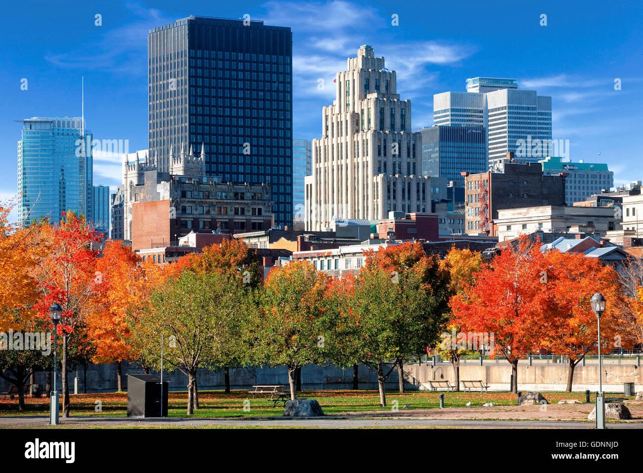 Lo skyline di Montreal in autunno Immagini Stock