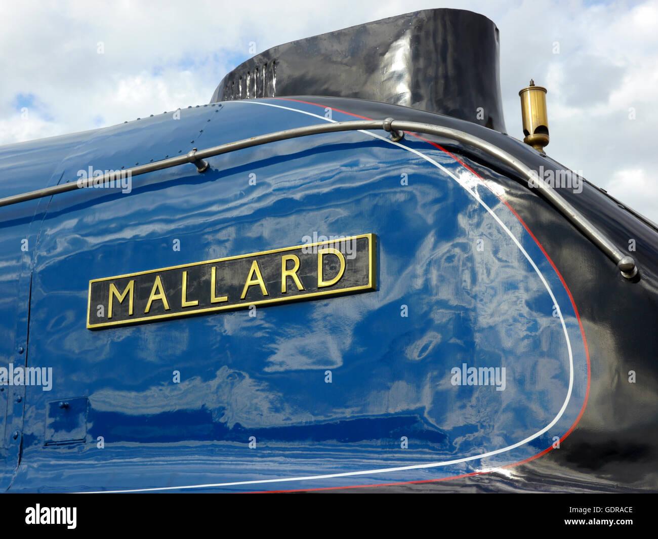 Mallard un A4 classe pacifico locomotiva, titolare del mondo record di velocità per una locomotiva a vapore. Immagini Stock