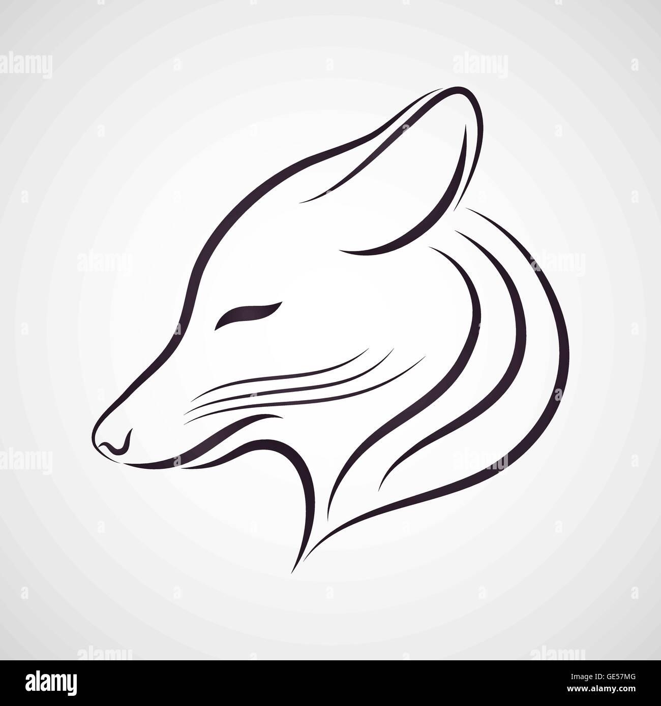 Ma è vero che wile e coyote non può raggiungere beep beep