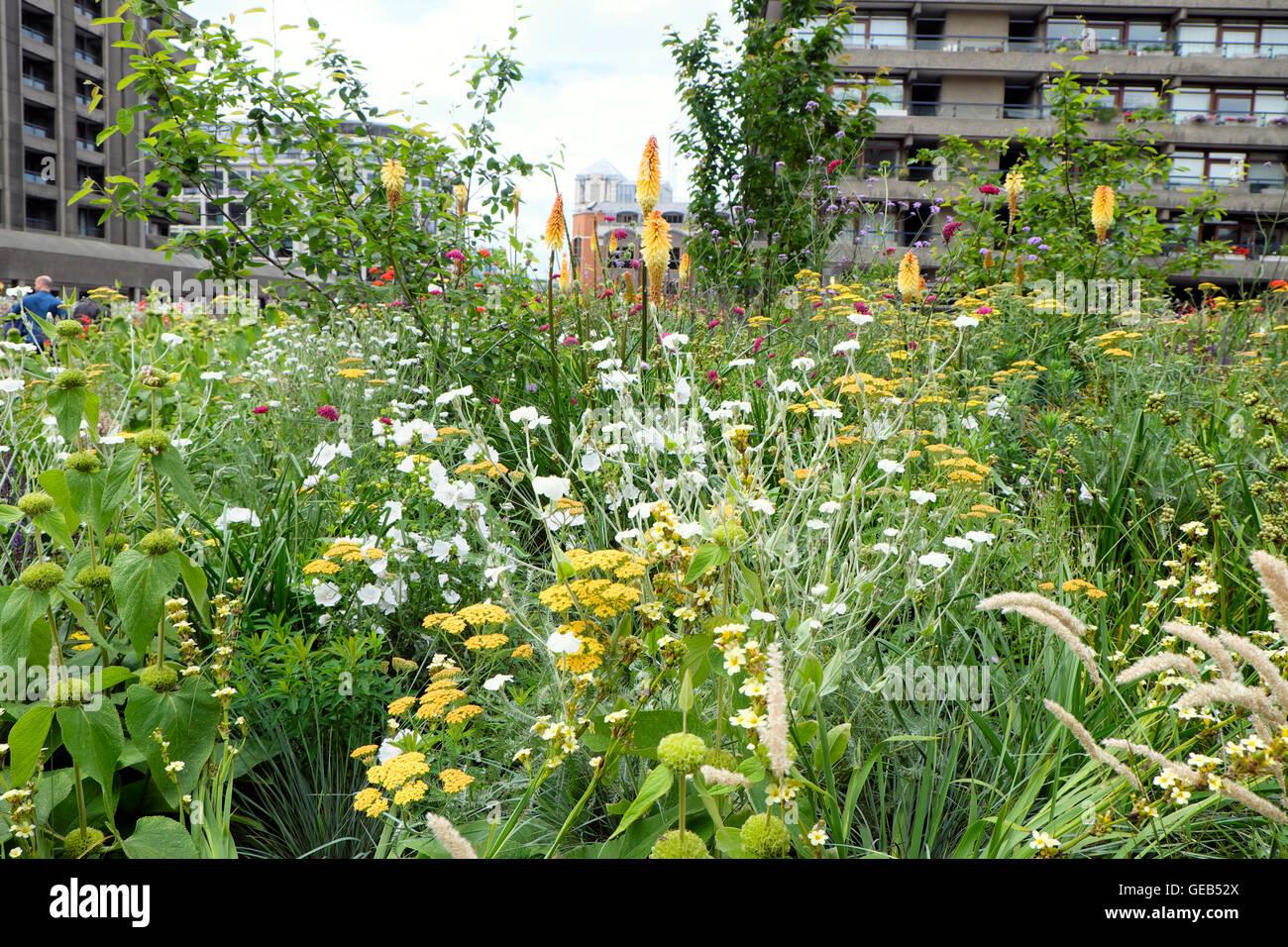 Architetto Di Giardini progettista di giardini nigel dunnet urbano giardini di