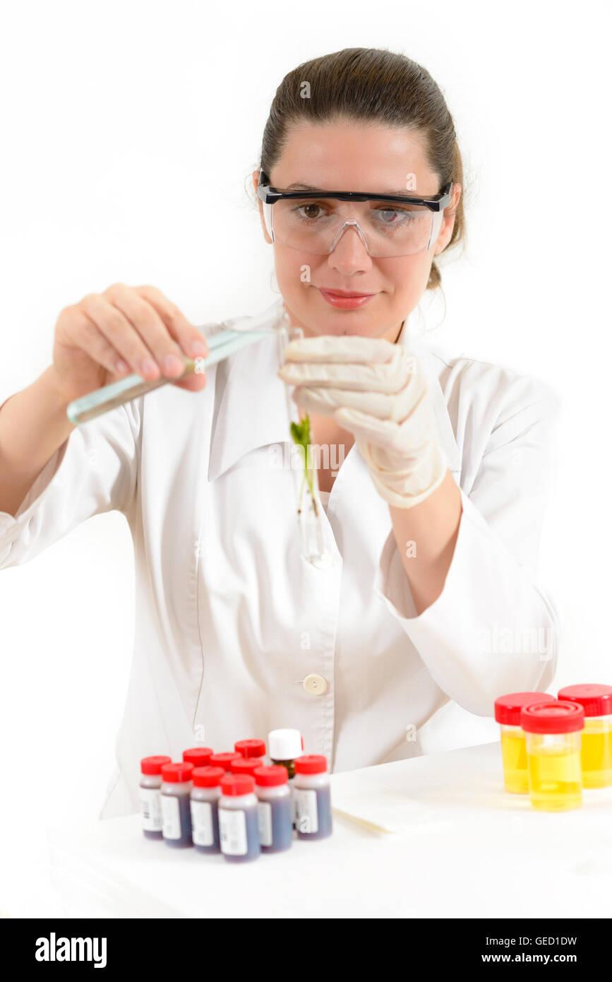 Giovane donna lavora con impianti in un laboratorio Immagini Stock